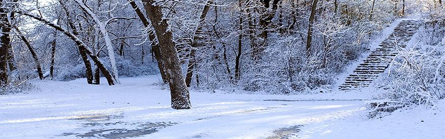 snowscene2-